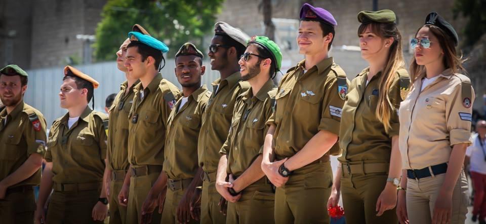 IDF MS